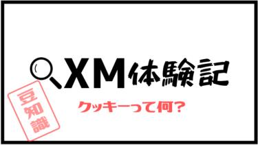 【解決!】XMの「本サイトはクッキーを利用します」って何?